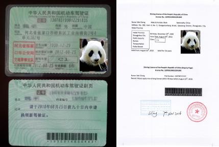 双鸭山选择驾驶证翻译公司时应考虑哪些问题?