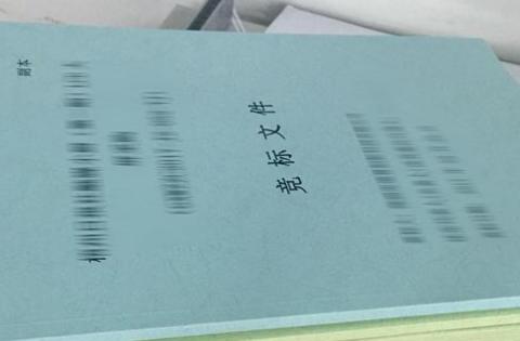 标书翻译,几十页文件,真的有必要吗?