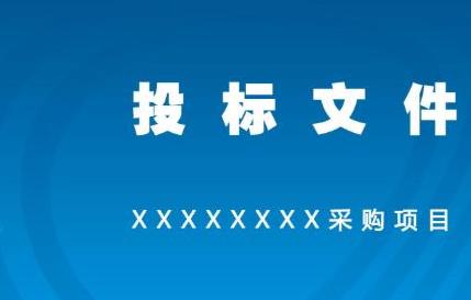 标书翻译要求严格,翻译公司需这样做